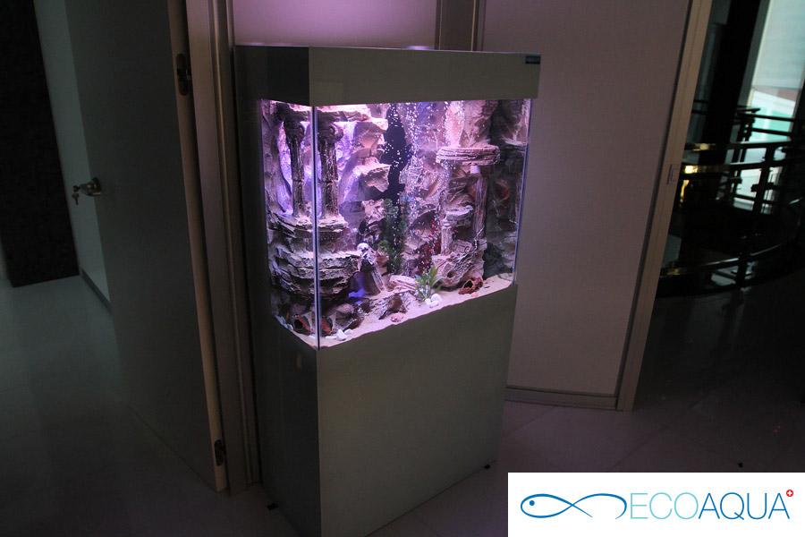 Aquarium in the office