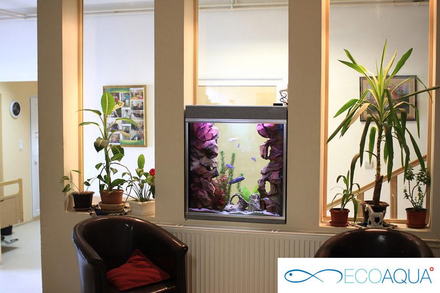 Aquarium in home for elderly