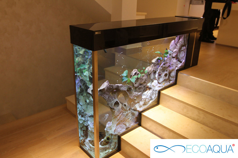 Aquarium in the apartment - Belgrade
