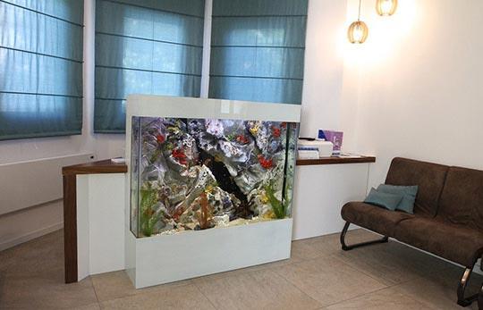 Aquarium in der ArztPraxis | Kundenspezifische Aquarien